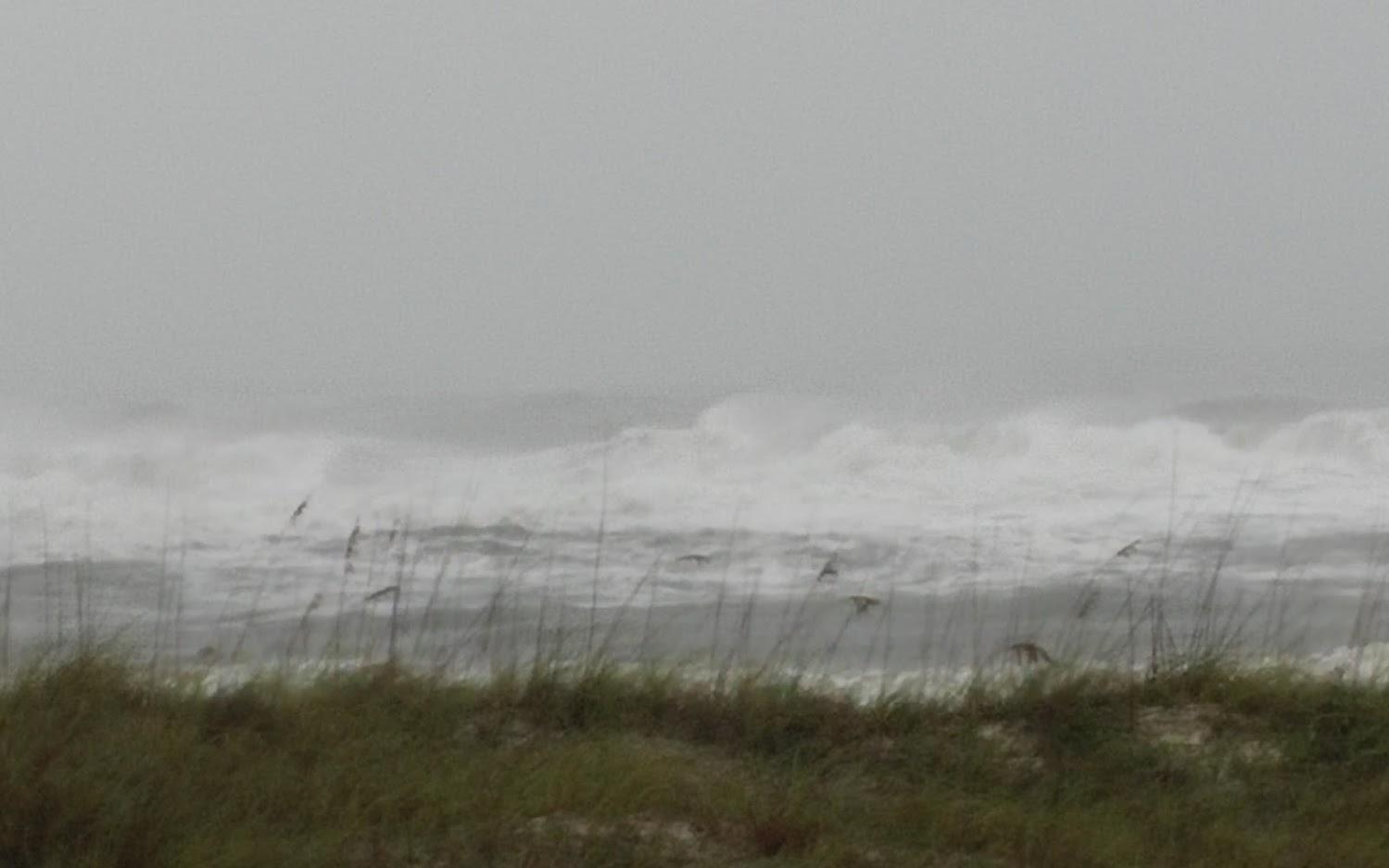 Perdido Key Association - Hurricane Sally